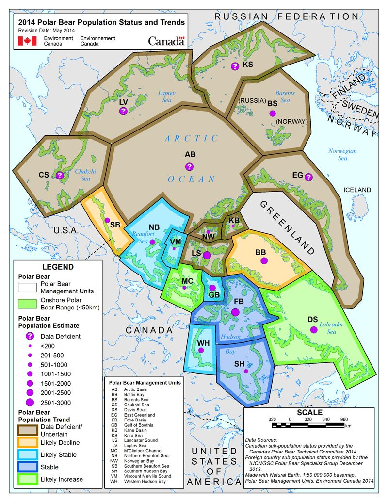 Circumpolar Map of the polar bear subpopulations and populations status information. A detailed long description is provided below.